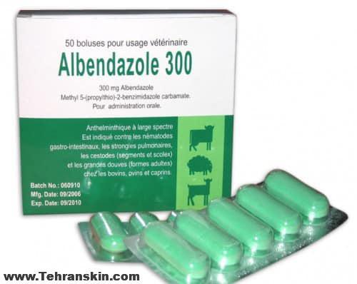 Albendazole 500x398 - درمان عفونت های کرمی با قرص آلبندازول و ناگفته هایی در اینباره
